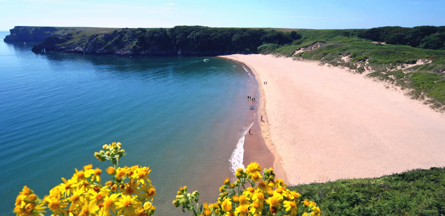 The beach at Barafundle Bay, Pembrokeshire