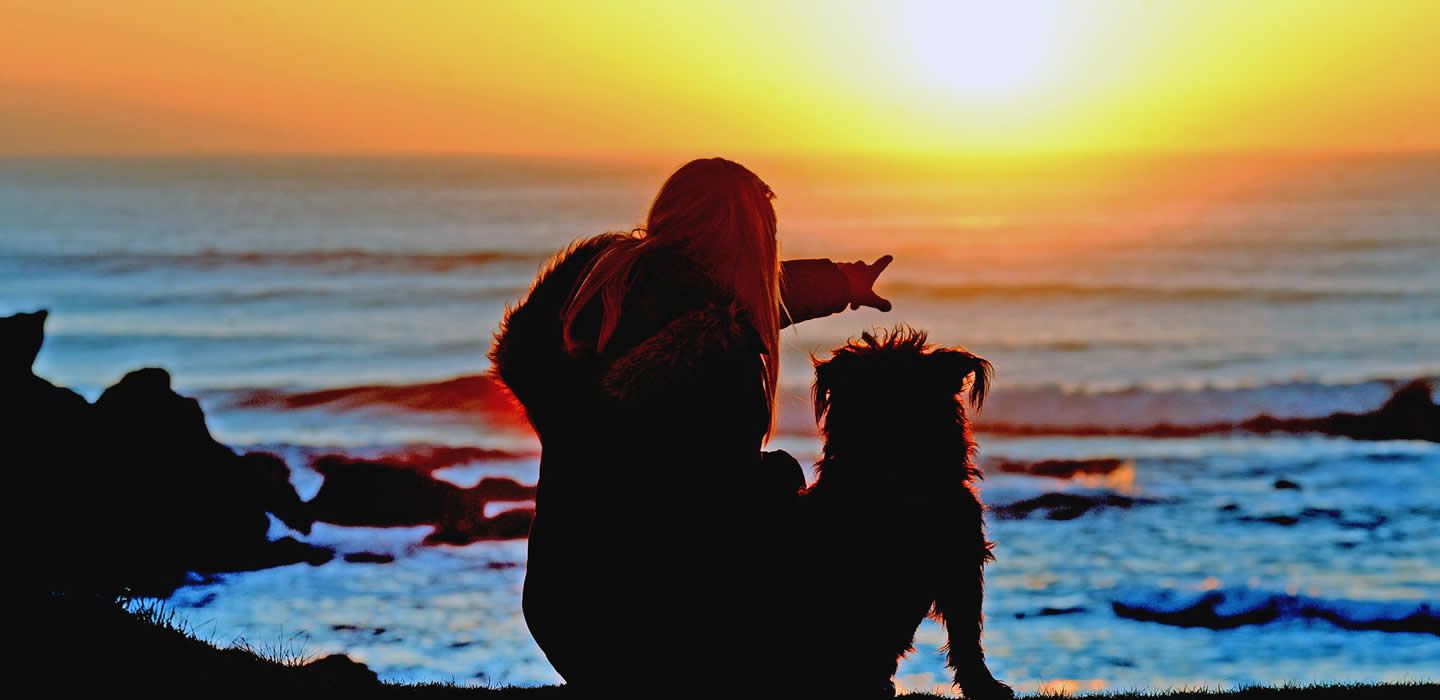 Woman and dog watching a sunset at a Pembrokeshire beach
